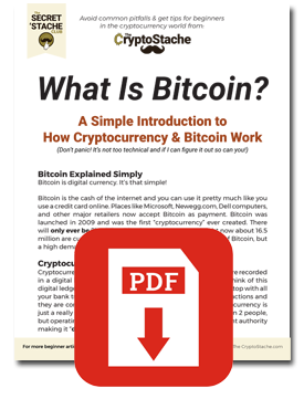 how cryptocurrency works pdf