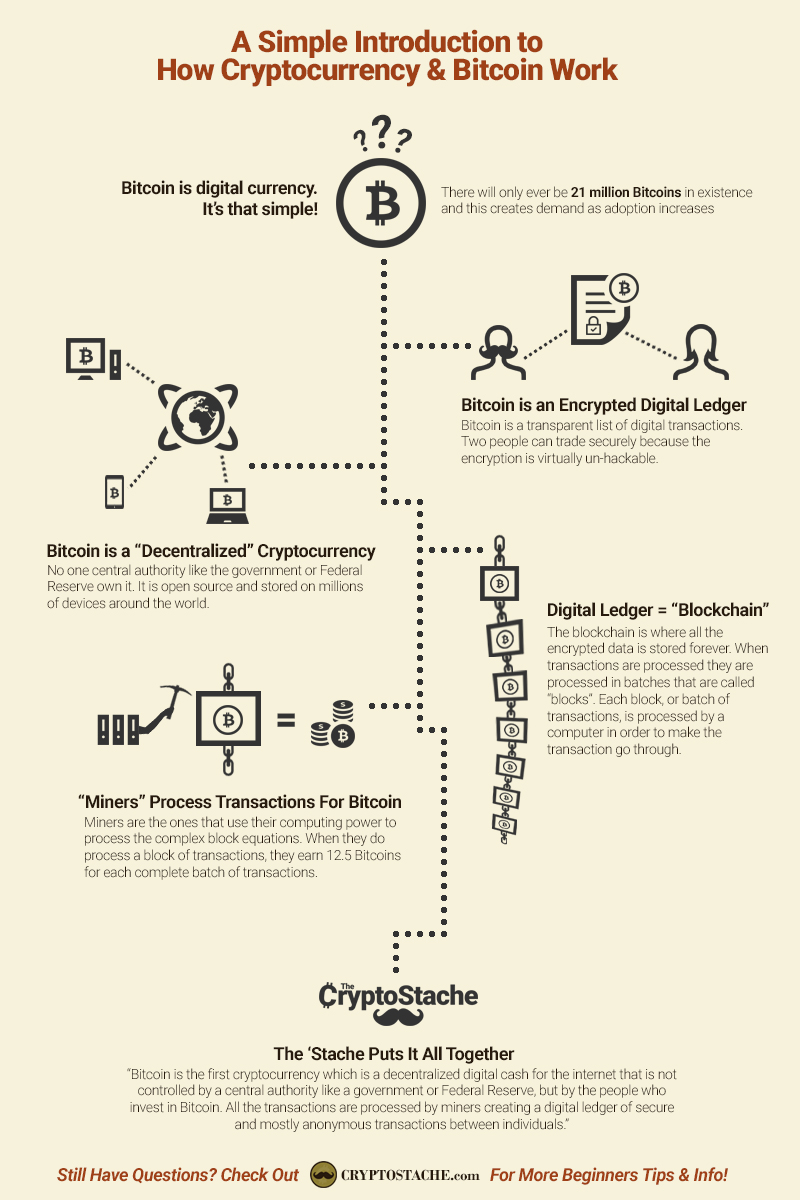 Image result for bitcoin infographic